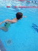 24-Stunden-Schwimmen_1